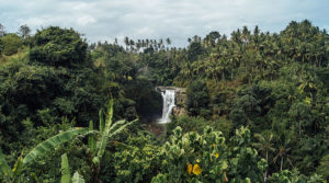 water fall day trip bali-surf-guide